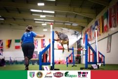 largeteam_jumping-3